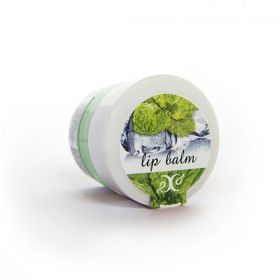LIP BALM with The Taste of Fresh Mint